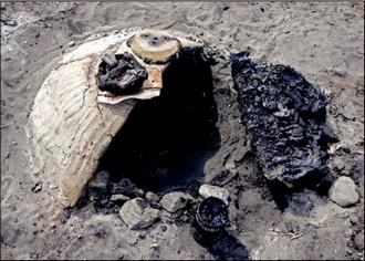 Artykuł autorstwa Krzysztofa Wasilczyka i Pawła Lisa opisujący archeologiczny eksperyment